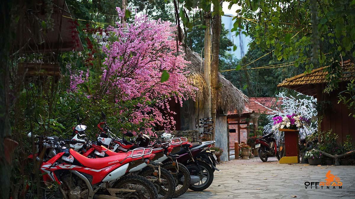 Hidden Vietnam offers Vietnam motorbike tour, Vietnam motorcycle tour off-road.