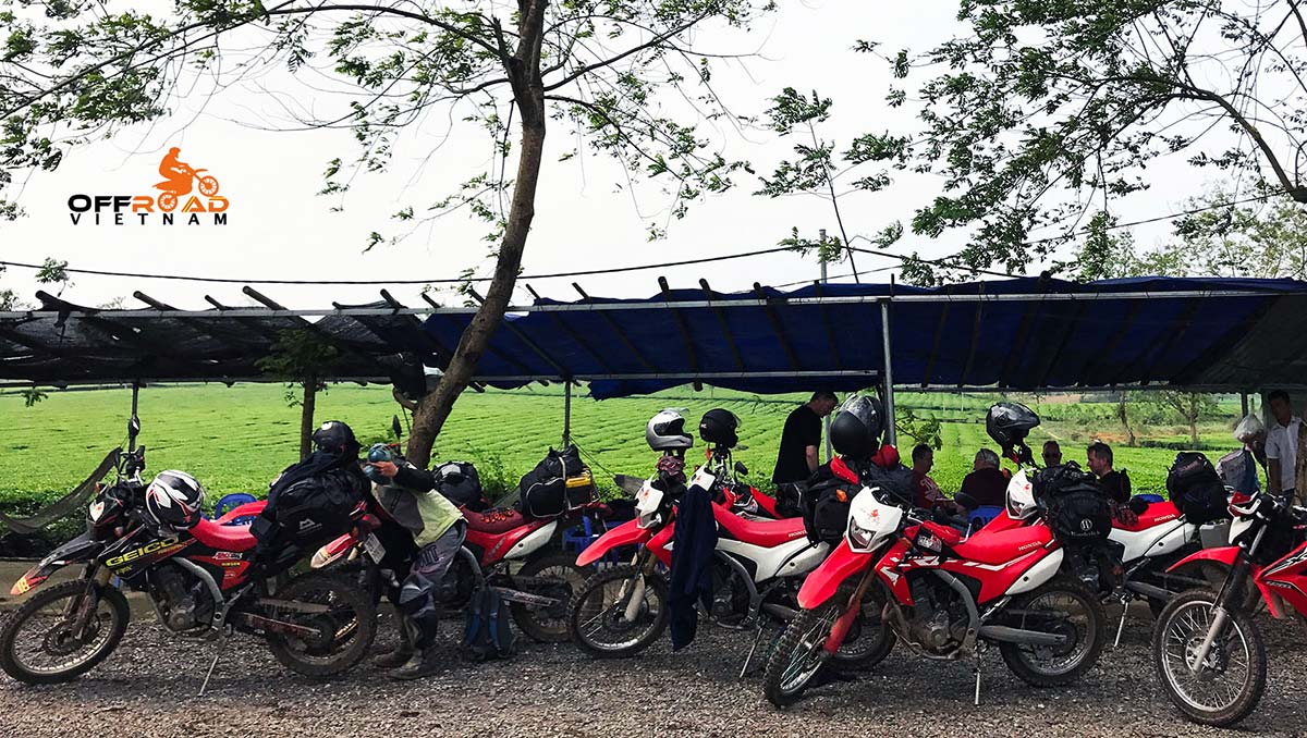 Safety Motorbike Riding Gear Rental: Korea's HJC helmets. China's Scoyco gloves and protection knee and elbow pads. Riding gear is one of the most important things if you take your adventures seriously. Vietnam Offroad provides helmets, gloves and knee and elbow pads.